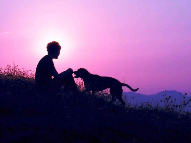 Man and Dog at Dawn