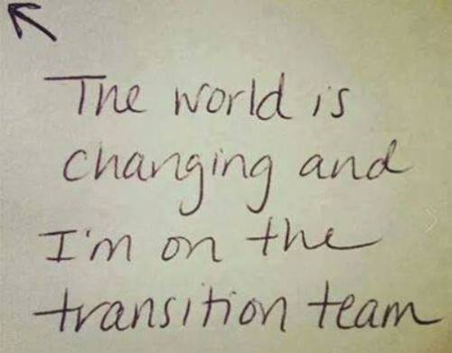Transition Team