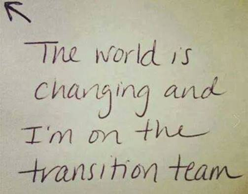 World_Transition_Team