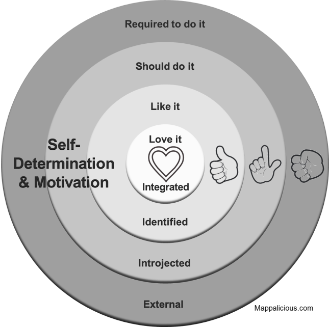self determination essays Key terms: motivation, competence, autonomy, relatedness self-determination theory (deci and ryan) self-determination theory (sdt) is an important theory of motivation that addresses issues of extrinsic and intrinsic motivation.