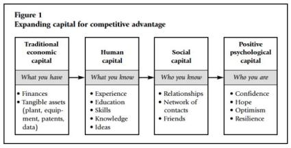 Positive Psychological Capital
