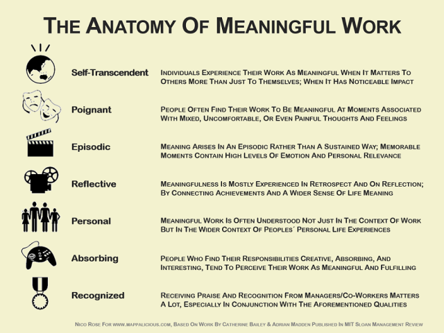 Anatomy_Meaning_Work